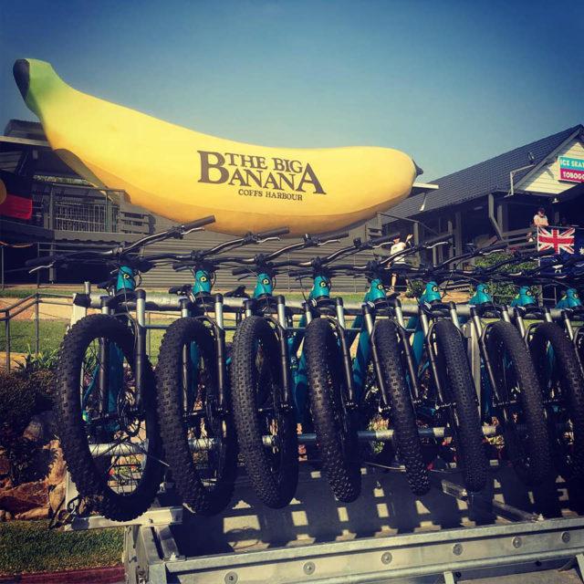 Big Banana with Bikes